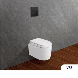 Bàn cầu két âm tường V56